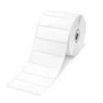 General Label 76x26mm White (rd-s04e1)